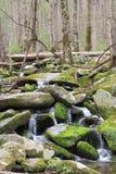 górski strumień spoko Obrazy Royalty Free