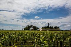 Górskiej chaty Cheval Blanc dwór i winnica, świątobliwy emilion, prawy bank, bordowie, Francja Obrazy Royalty Free