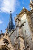 Góruje i gargulece Notre Damae obrazy stock