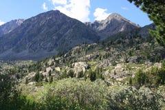 góry altai lato Obrazy Royalty Free
