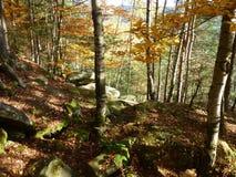 góry chodzić Zdjęcia Stock