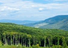Góry Chynadiyovo Zakarpattia Ukraina Obrazy Stock