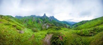 Góry Ciucas peack na lecie Zdjęcie Royalty Free