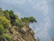 Góry Crimea przylądek AI - Petri zdjęcia stock
