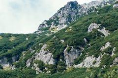 Góry, dolina pięć jezior, Polska, Zakopane Fotografia Royalty Free
