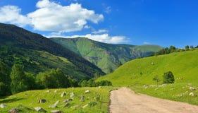 Góry dolinne zdjęcia stock