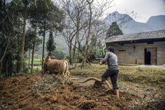 Góry drogowe w gubernialnym brzęczenia giang fotografia stock
