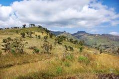 Góry Elgon park narodowy, Kenja Zdjęcia Royalty Free