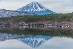 góry fuji Obraz Stock