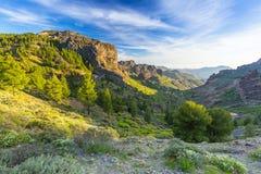 Góry Granu Canaria wyspa Obrazy Stock