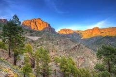 Góry Granu Canaria wyspa Zdjęcia Stock
