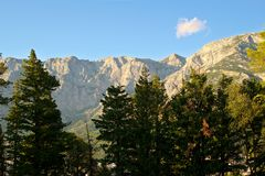 Góry I Drzewa Fotografia Royalty Free