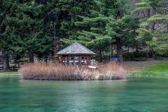Góry i drzewa odbijają w zimnym jeziorze w Gressoney obraz stock