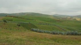 Góry i grodzcy regionów fes, Morocco obraz stock