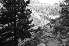 Góry i jeziorna fotografia z odbiciem obraz stock