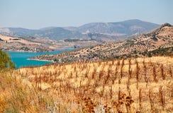 Góry i jezioro blisko do Zahara De Los angeles Sierra Zdjęcia Stock