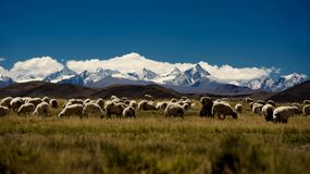 Góry i jezioro w Tybet Plateau Obraz Stock