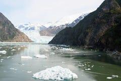 Góry i lodowiec w Tracy Zbroją Fjord, Alaska zdjęcie royalty free