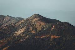 Góry i natura W wieczór koloru Złotych lasowych lasach w Południowa Azja Obraz Stock