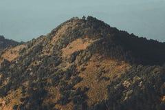 Góry i natura W wieczór koloru Złotych lasowych lasach w Południowa Azja Zdjęcie Royalty Free