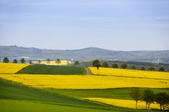 Góry i rapeseed pola w wiośnie w Niemcy Fotografia Stock