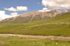 Góry i trawy sceneria Zdjęcia Stock