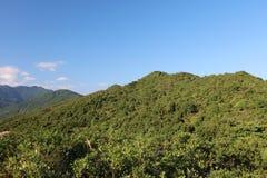Góry i wycieczkować trasa smoka ` s plecy Zdjęcie Royalty Free