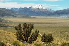 Góry i wysokiego plateau równiny zbliżają wulkanu isluga fotografia stock