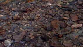góry jasna woda Obraz Royalty Free