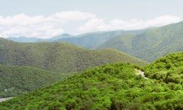 Góry krajobrazowa panorama Zielona roślinność na skłonach Zdjęcia Stock