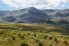 Góry krajobrazowy pobliski oudtshoorn Zdjęcie Royalty Free