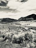 Góry krajobrazowy sepiowy obraz stock