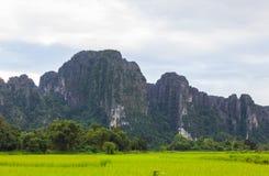 Góry kształtują teren ryżową naturę zdjęcie stock