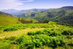 Góry kształtują teren w letnim dniu Fotografia Royalty Free