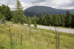 Góry Kształtują teren Z ogrodzeniem I kwiatami W lecie Obrazy Stock