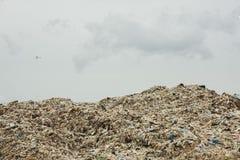Góry który jedzą istoty ludzkie śmieci i urlop są wypiętrzają w górę zdjęcie stock