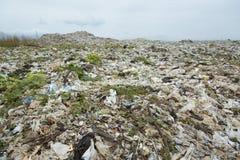Góry który jedzą istoty ludzkie śmieci i urlop są wypiętrzają w górę zdjęcia stock