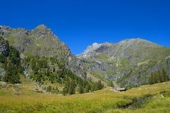 góry leśne Obraz Royalty Free