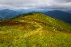 Góry meandruje ślad Zdjęcie Stock