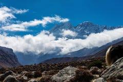 góry Nepal Zdjęcie Stock