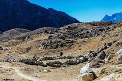 góry Nepal Fotografia Royalty Free