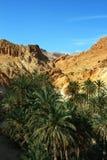 góry oaza Zdjęcia Royalty Free