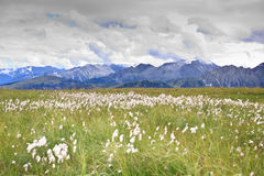 góry panorama zdjęcia stock