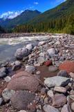 góry park narodowy rainer Obraz Royalty Free