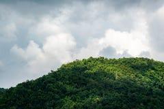 Góry pełno drzewa Fotografia Royalty Free