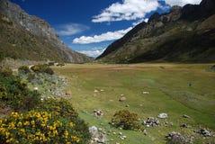 góry Peru Zdjęcia Stock
