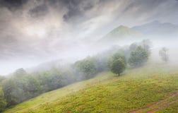 góry piękny mgłowy krajobrazowy lato Zdjęcie Royalty Free