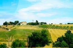 Góry, pola i łąki Tuscany, Zdjęcie Royalty Free