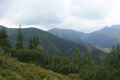 góry Poland Zdjęcia Royalty Free