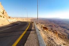 Góry pustynna droga, Ramon krater, koziorożec obrazy royalty free